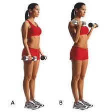 rosca biceps
