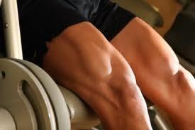 Entenda insulina e músculos