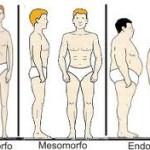 Biotipos – Descubra qual o seu para conseguir melhores resultados