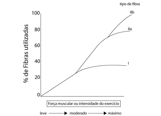 força-muscular-ou-intensidade-do-exercicio